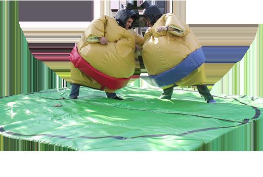 Animation et jeux gonflables - anniversaire enfant mariage fête de village d'entreprise arbre de ...
